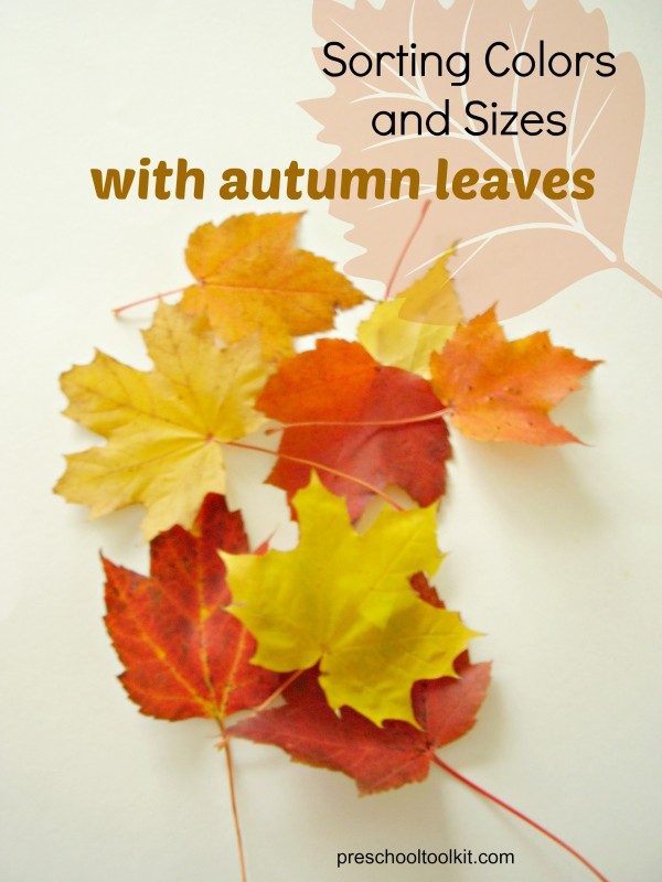 Autumn leaves activities