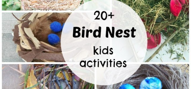 20+ bird nest kids activities indoor and outdoor fun