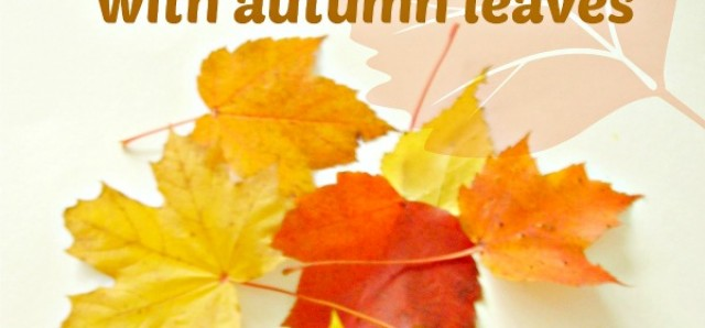 Fall theme sorting activity with colorful leaves