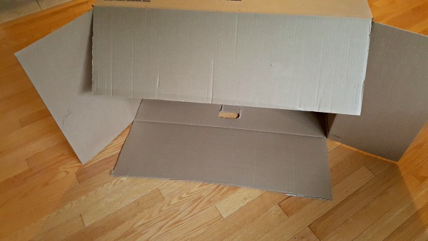 Place the cardboard box on its side to make the theater.