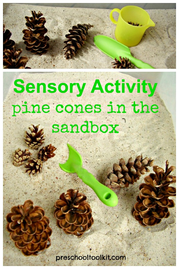 Sensory bin with pine cones and sand