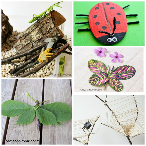 Twig roundup of preschool activities