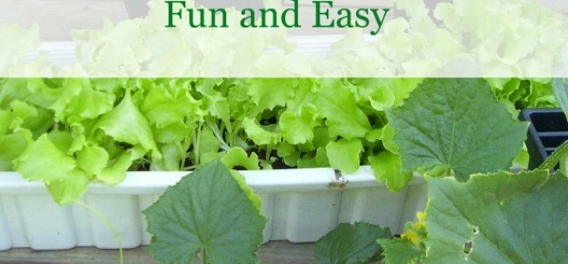 Gardening tips for fun and easy hands on learning with preschoolers