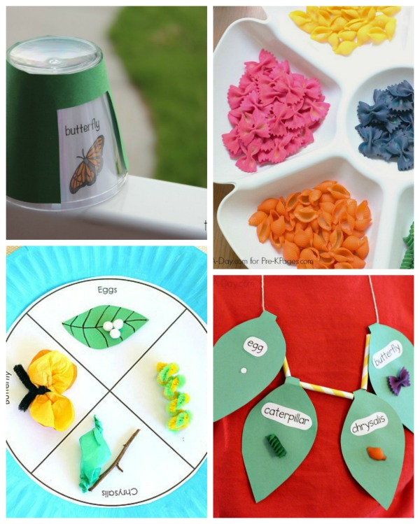 Butterfly life cycle activities for kids
