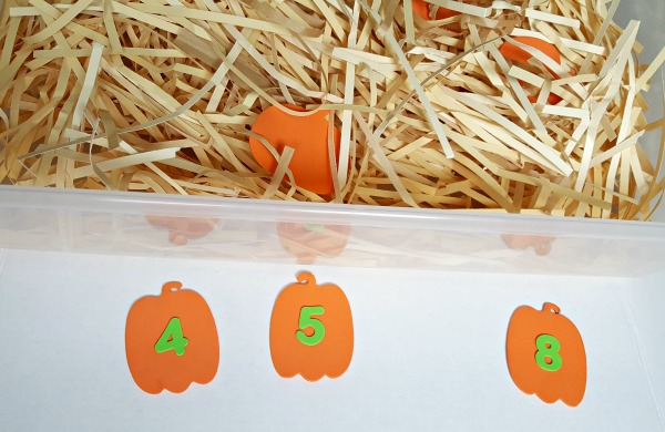 Place numbered pumpkin out outs in the sensory bin