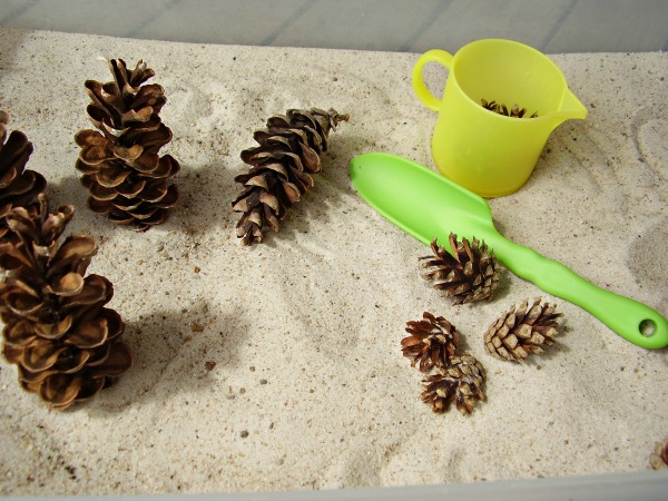 Pine cones in the sandbox sensory play